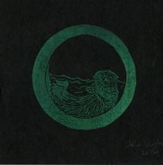 OtterO807