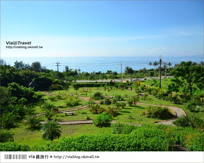 【台東民宿】台東願井民宿~在藍天下遇到南法風的浪漫莊園8