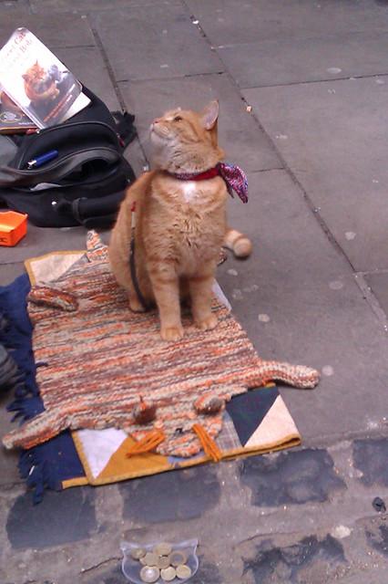 Street Cat Bob in Covent Garden