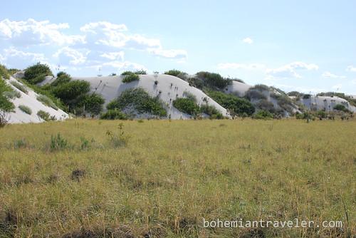 White Sands Natl Mon in New Mexico (18)