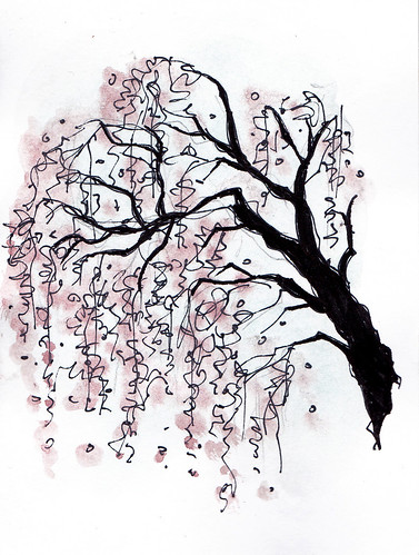 free coloring pages of cherry blossom tree