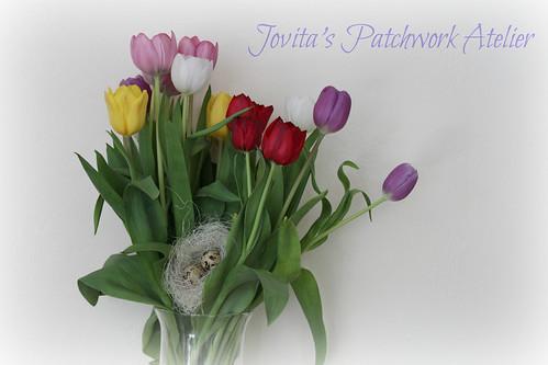 tulipsinmykitchen