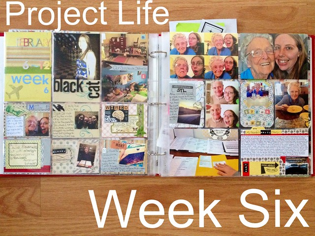 Project Life Week Six