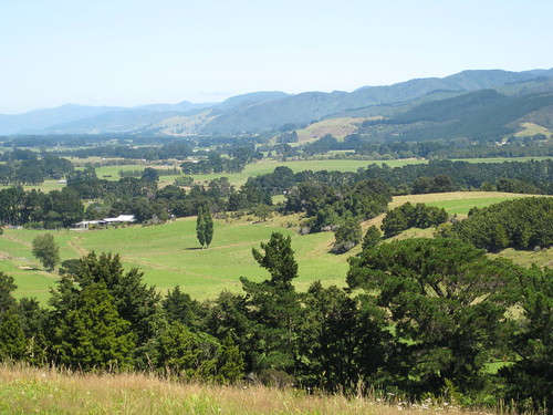 park newzealand mountain rural walking bush outdoor wairarapa carterton fensham