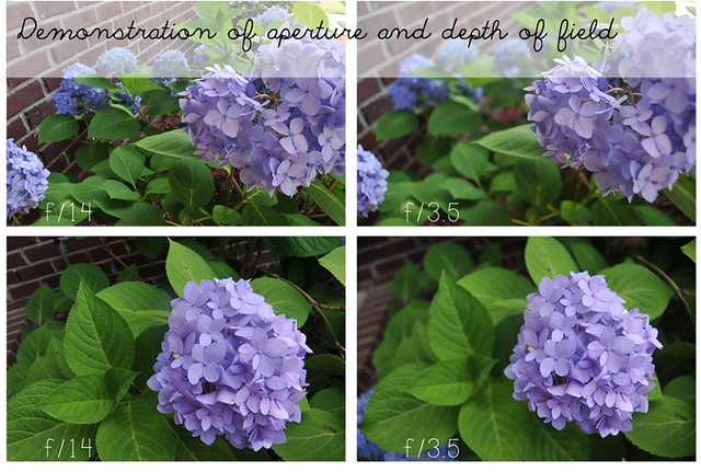 demonstration of aperture + DOF