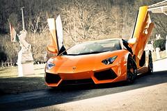 [免费图片素材] 交通, 汽车, 兰博基尼, 兰博基尼 Aventador ID:201212040000