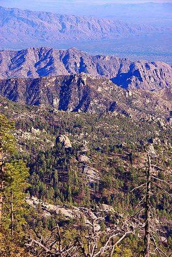 camping arizona usa mountains forest mt loop hiking az hike ridge mount trail national wilderness coronado lemmon coronadonationalforest mtlemmon catalinas santacatalinamountains mountlemmon pusch wildernessofrocks azhike alhikesaz lemmonrock rockspuschridgewilderness