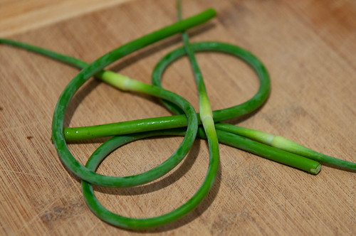 Garlic Scrapes