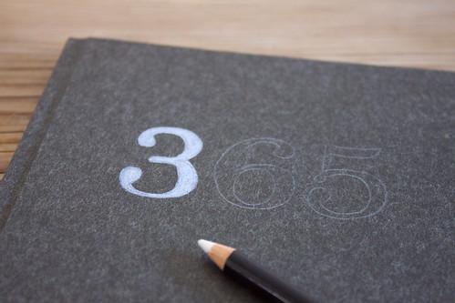 diary 365 DIY