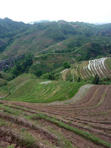 C-Guangxi-Dazhai-montee (17)