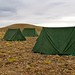 Small photo of Campsite tents