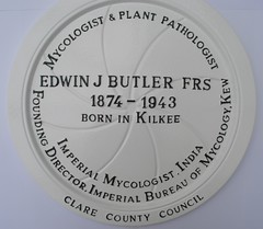 Photo of Edwin John Butler white plaque