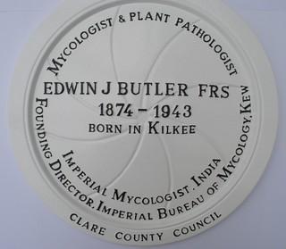 Edwin J Butler FRS, Kilkee