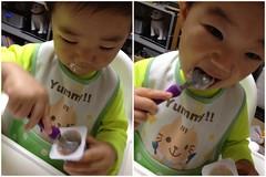 ヨーグルトをスプーンですくって食べるとらちゃん (2012/6/26)