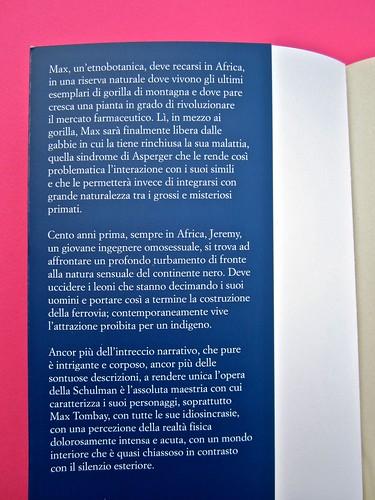 Audrey Schulmann, Tre settimane a dicembre. edizioni e/o. Grafica di Emanuele Gragnisco. Risvolto di copertina (part.), 1