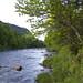 Rivière Sautauriski