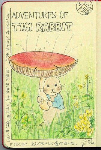 2012_07_04_tim_rabbit_01