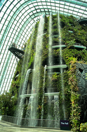 Water cascades down the 35m man made waterfall in a deafening rush that greets visitors to the Cloud Forest