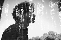 [フリー画像素材] グラフィック, フォトレタッチ, 人物, 男性, 人物 - 森林, 人物 - 横顔・横を向く, モノクロ ID:201207181200