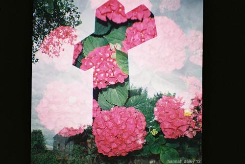 flowercross pink