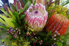 flower arranging, flower, floral design, plant, macro photography, wildflower, flora, flower bouquet, floristry, protea, proteales,