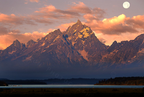 One Teton Morning