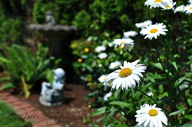 justfollowingJesus.com 72912b.jpg
