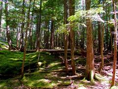 Cascade National Park