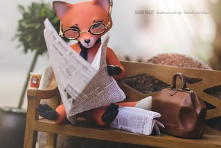 Khitrula Fox by Whispering Grass