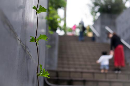 台北兒童育樂中心(KR-35MM2.4)