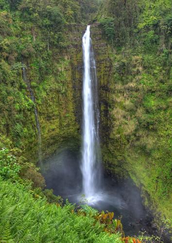 green nature water hawaii waterfall ngc falls tropical bigisland hdr akakafalls