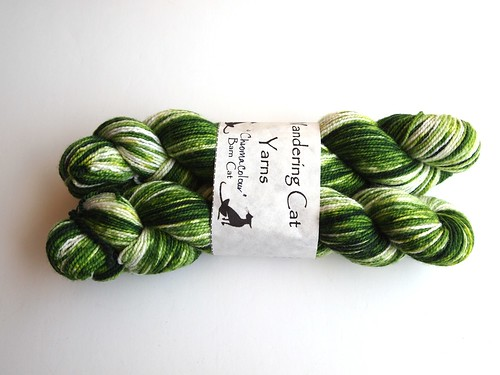 WCY-Chromacholors in green for one pair of socks-on Barn Cat