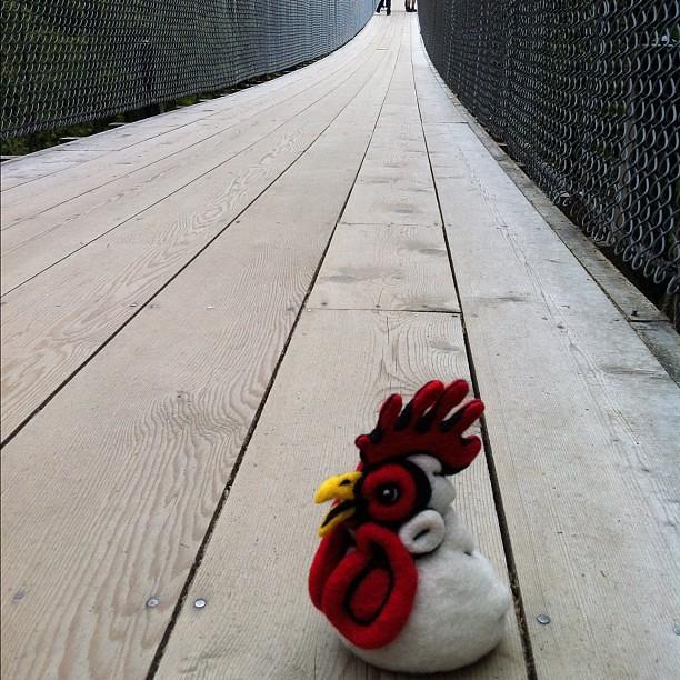Felted Chicken Head on the Capilano Suspension Bridge
