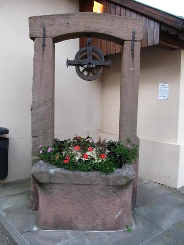 dambach la ville- chateaux- bernstein- ortenbourg 353