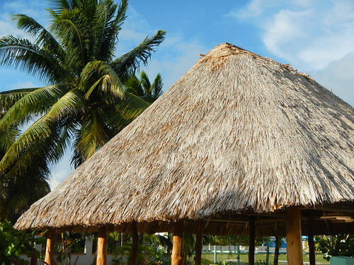 Bayleaf palm palapa for SCUBA divers
