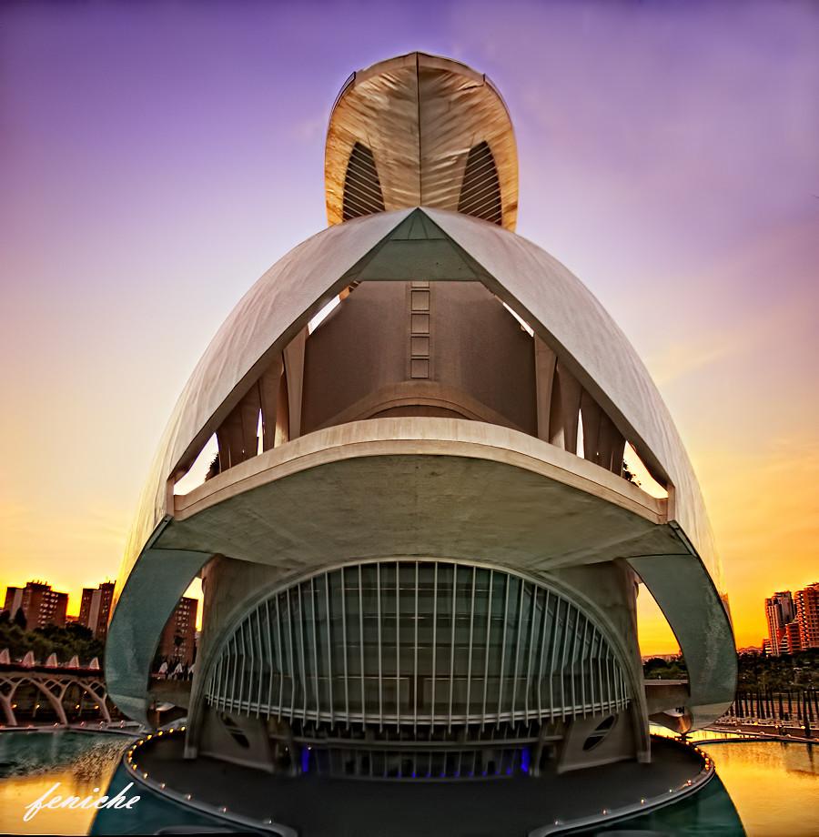 el casco del guerrero ---ciudad de las artes y las ciencias