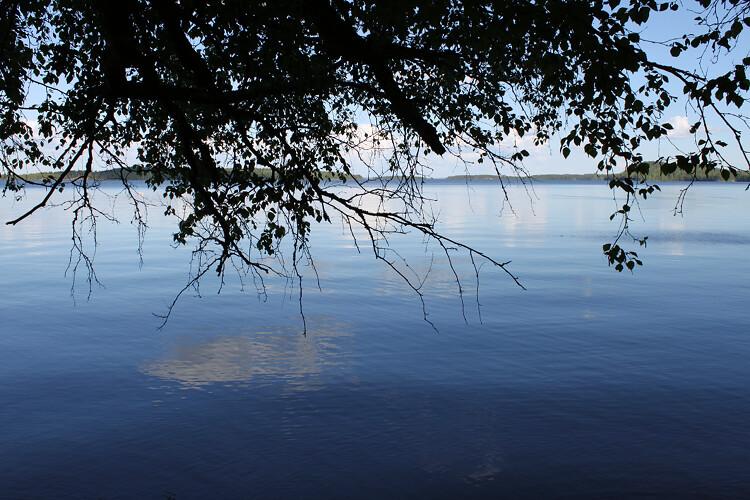 järvijaoksa