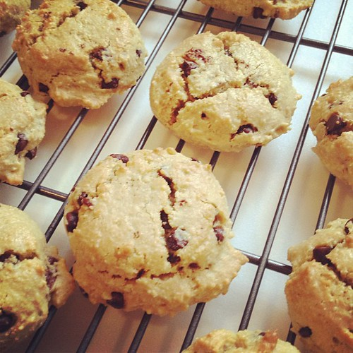Chocolate chip pecan gluten-free, grain-free cookies. Recipe on the blog shortly. by elletrain