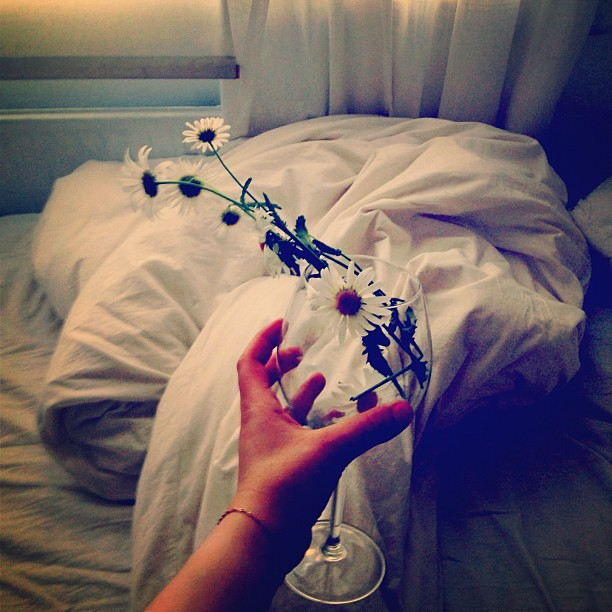 #daisies #inmybed #wineglass is a good #vase #sunlight #5am