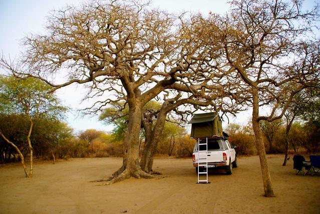Khama Rhino Campsite in Botswana