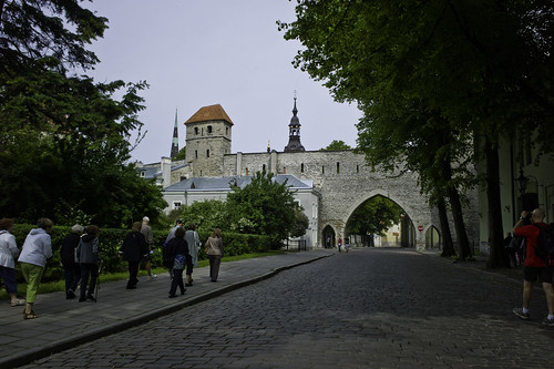 Old city wall of Tallinn, Estonia.