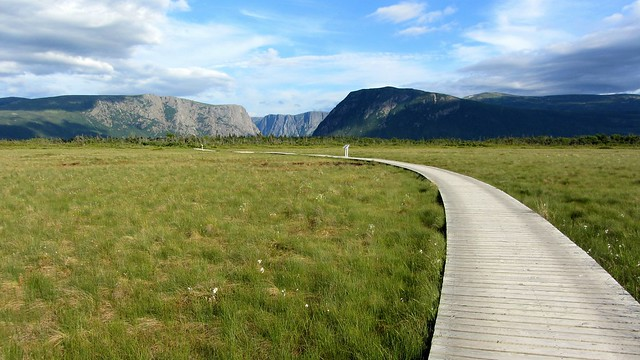 Pathway to Western Brook Pond