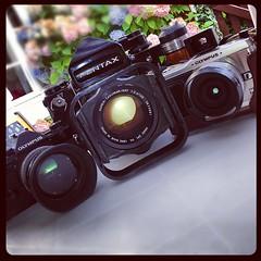 Cameras on holiday (Olympus OM2 SP, Pentax 67, Olympus Pen E-P1) - Photo of Villebaudon