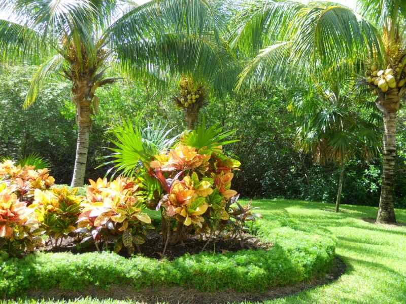 Jardines Bah�a Principe