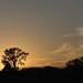 Sunset_1448.jpg