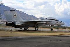 Grumman F-14A Tomcat 160898 AJ-101 VF-41 Black Aces U.S. Navy