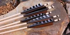 Viking Arrows