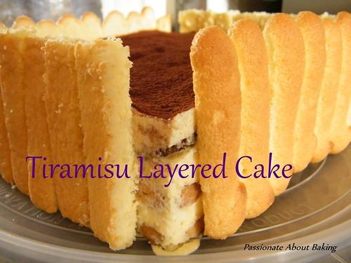 cake_tiramisu03