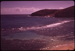 Koko Head Park in the Hanauma Bay marine life conservation district is a popular snorkelling and skin diving spot. All marine life is protected here, October 1973