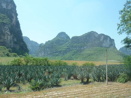 C-Guangxi-Route Chutes Detian (62)
